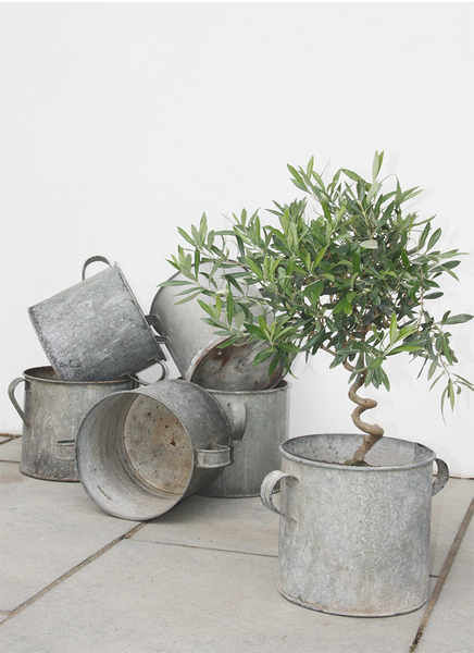 Antique Zinc Garden Planter