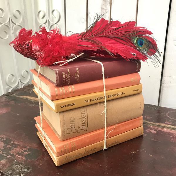 Vintage Book Bundle In Orange Tones