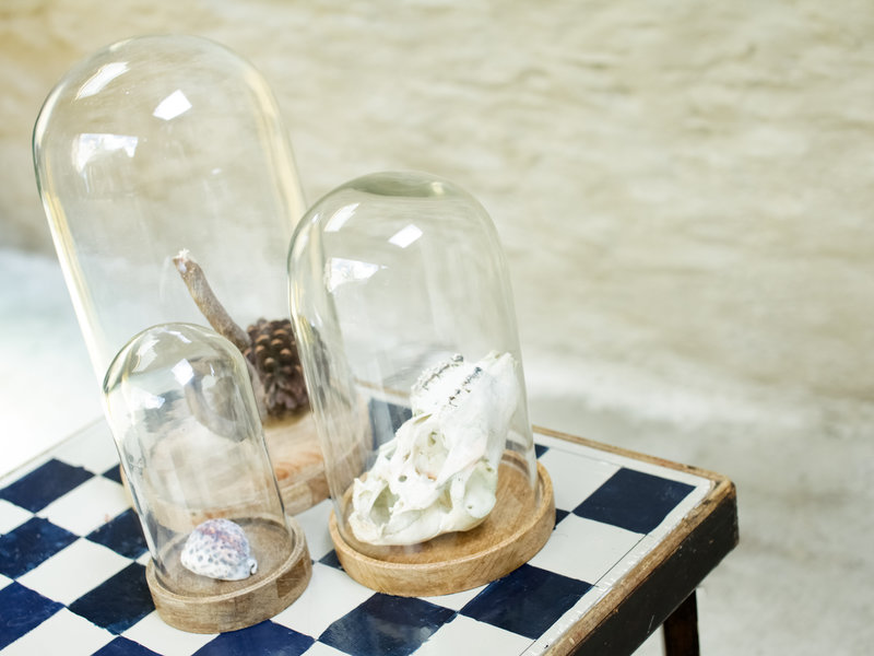 Medium Decorative Glass Dome